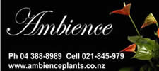 Ambience plants